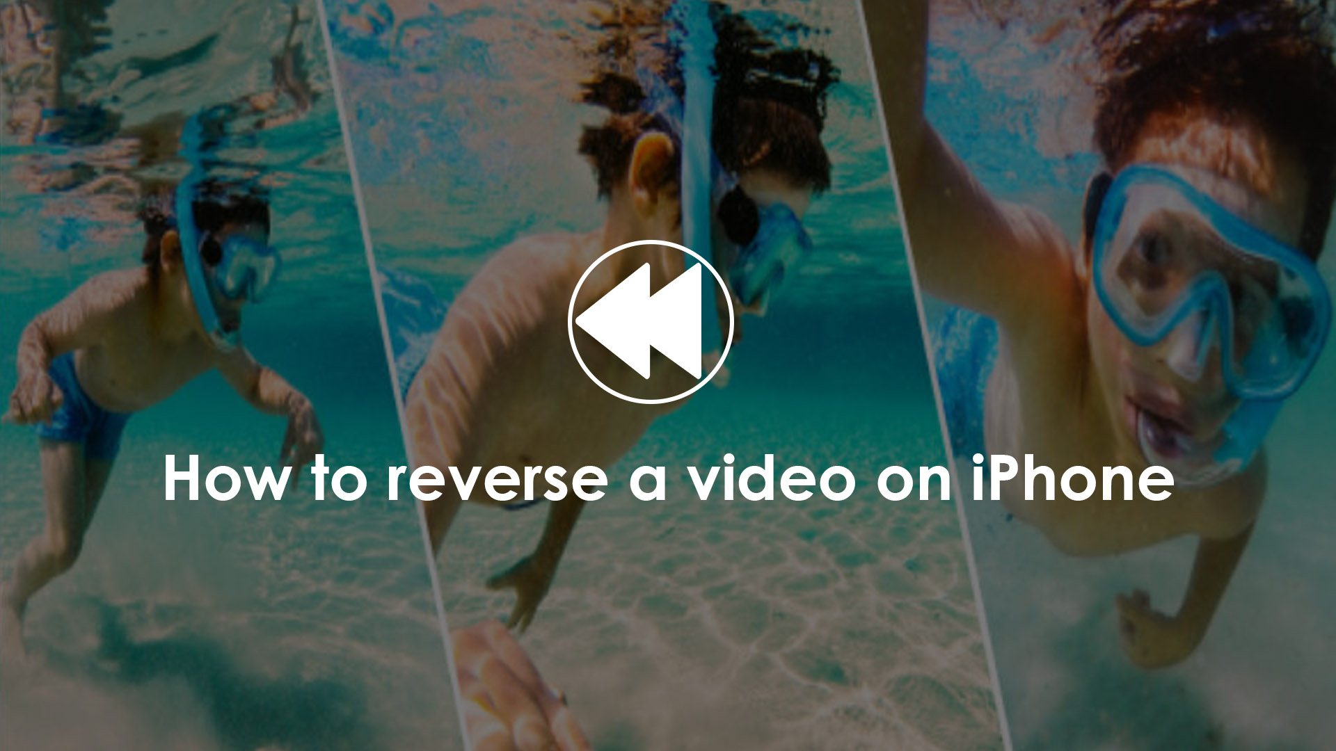 how to reverse a video on iphone